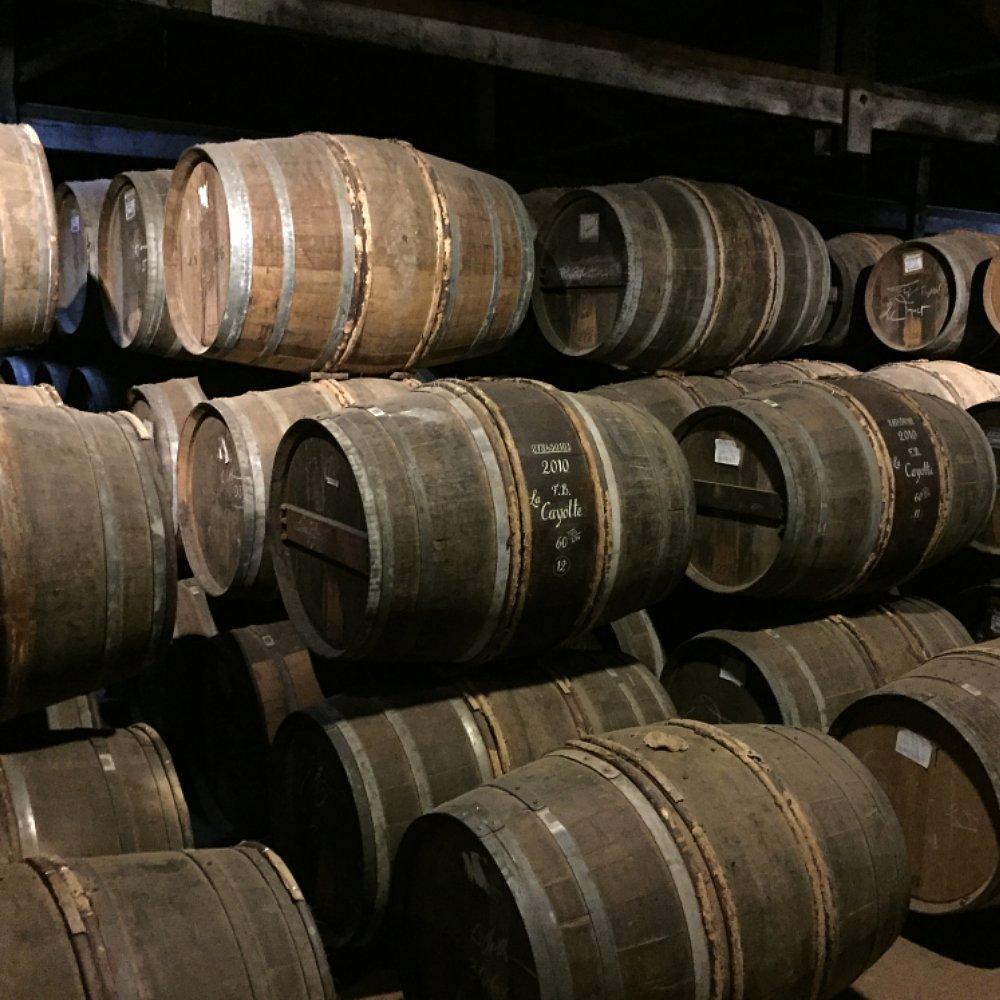 Verschiedene Fässer in einem Cognac-Keller